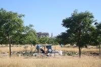 Barraca i l'església de Sant Antoni