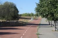 Carril bici de l'Avinguda de la Collada