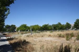 Parcel·les buides del Parc de Baixamar