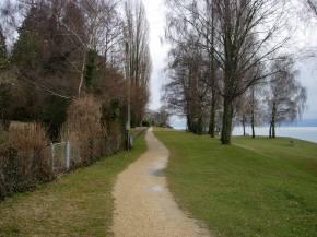 Un camí sense fi i ple depolseguera